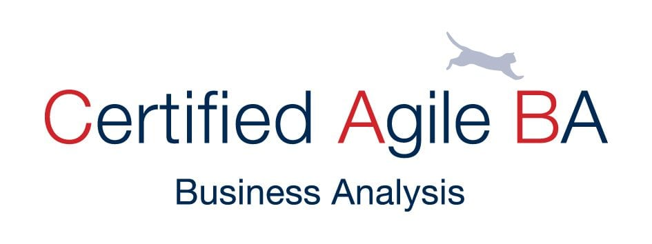 Schedule r1 training business analyst training singapore learn the value principles of agile and discovery and delivery frameworks as proposed by the scrum alliance and the iiba project professionals with agile reheart Image collections